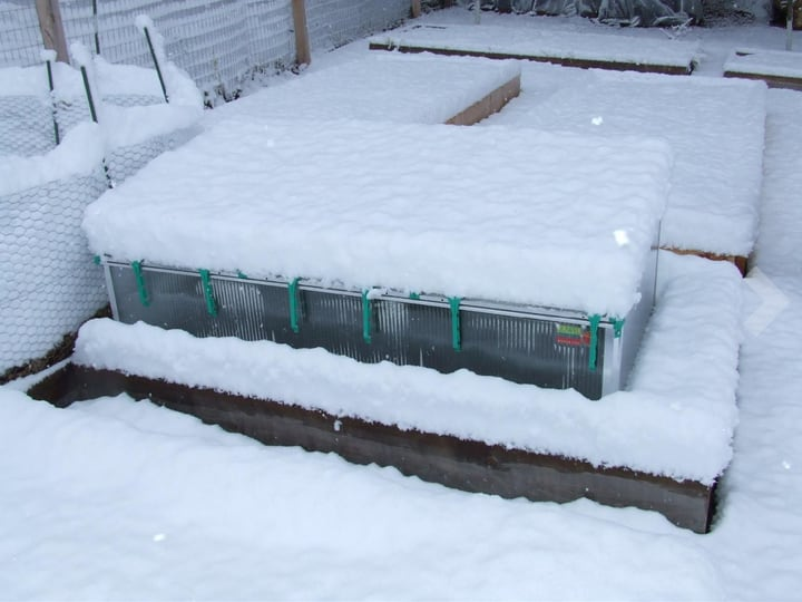 considering snow levels in winter gardening
