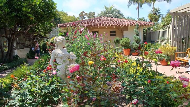 diy rose garden in the front yard