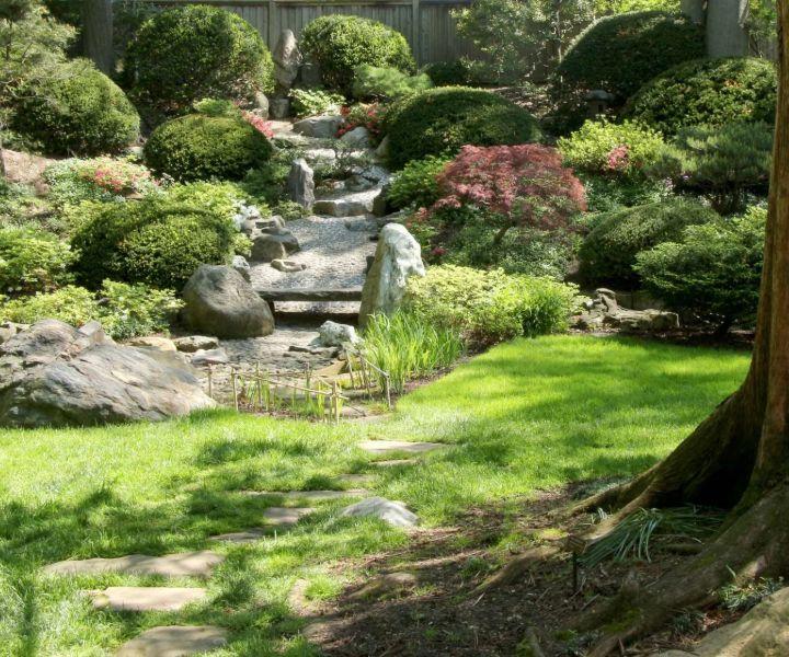 landscape gardening for beginners