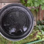 rain water bucket for harvesting