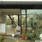 starting a terrace garden