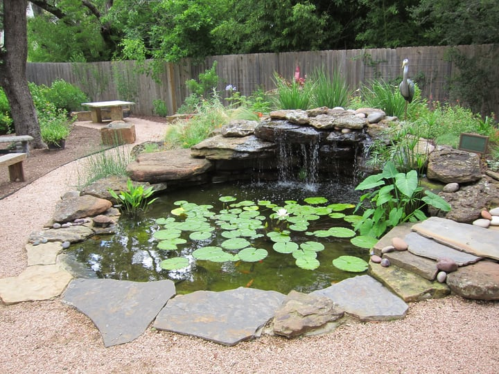 using rocks to outline water gardening features