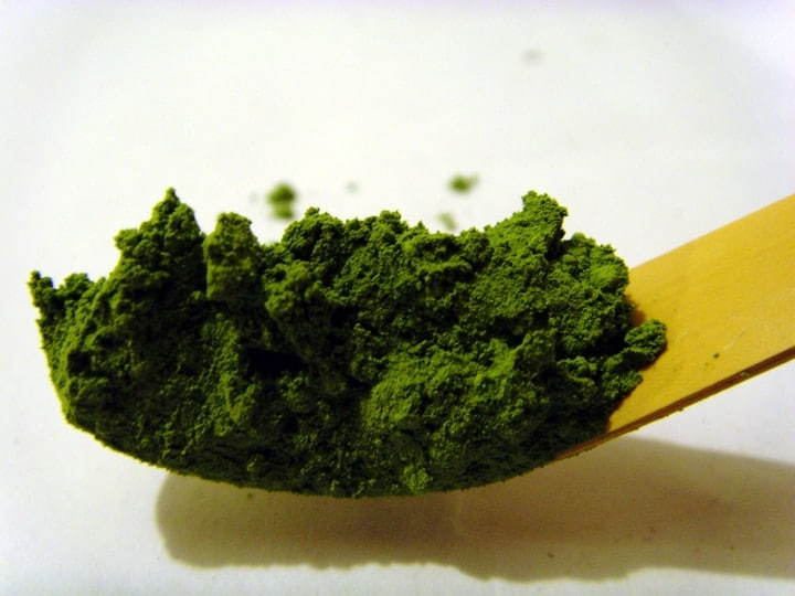 usucha matcha green tea