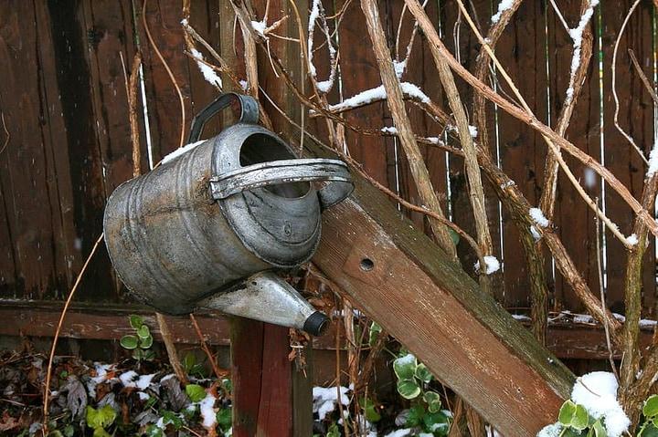 water bucket in winter