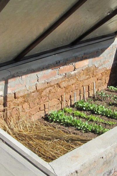 winter gardening preparation