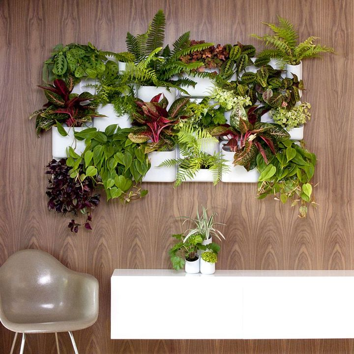 a living wall planter