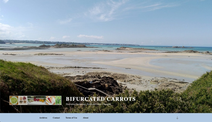 bifurcated carrot best vegetable garden website