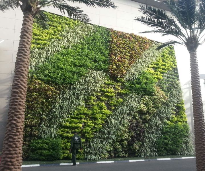building a plant wall