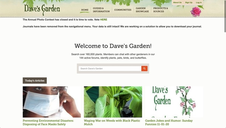 daves garden best plant information website