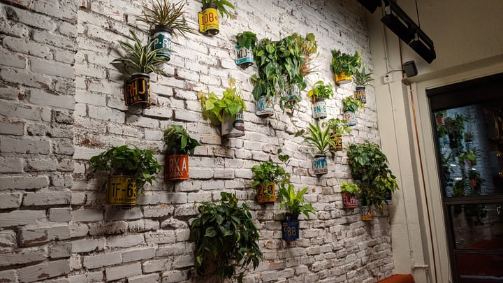 diy potted wall garden