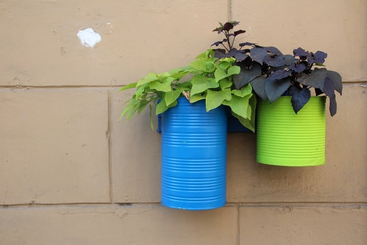 diy wall garden using recycled cans