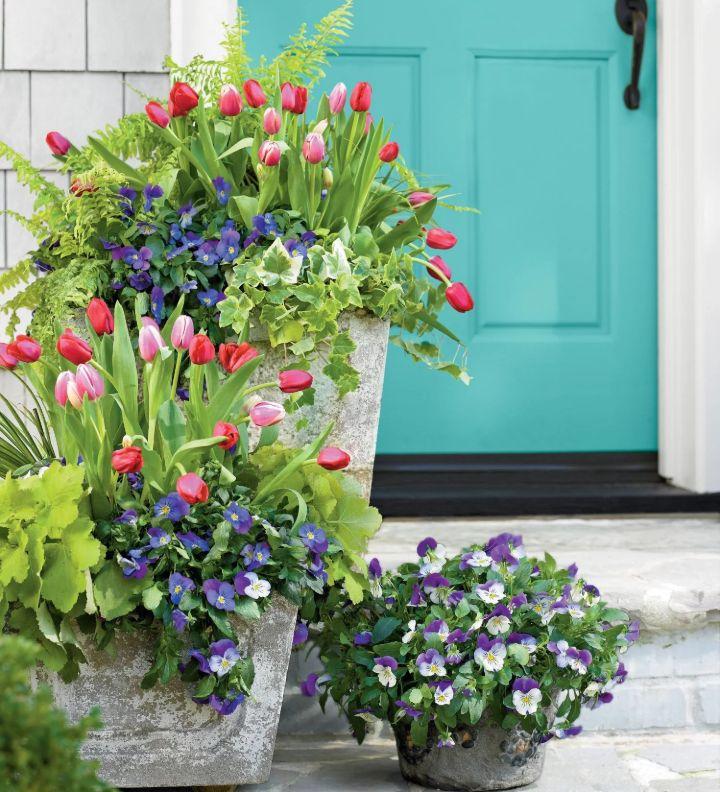 early spring gardening