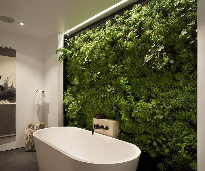 grow moss wall