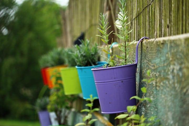 hanging herb wall garden