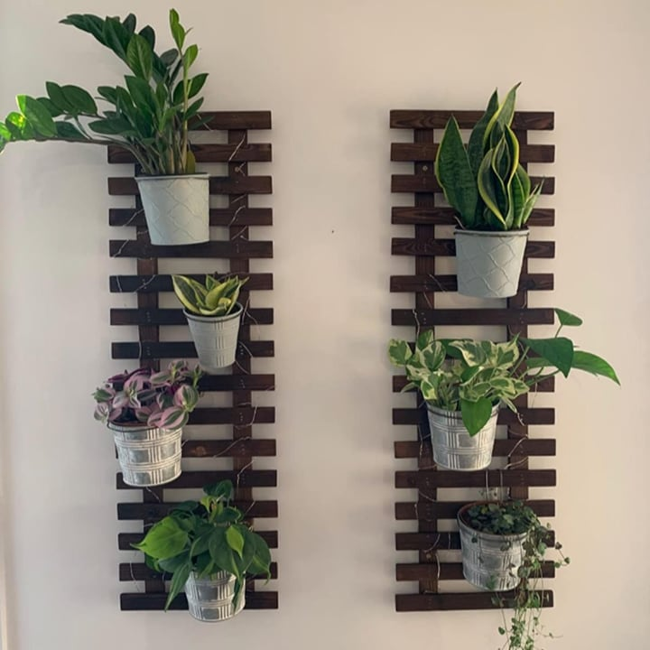 living plant wall with pallet support