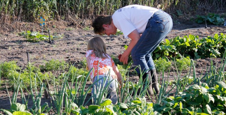 man and child gardening together