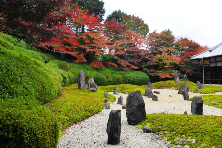 moss garden in japan