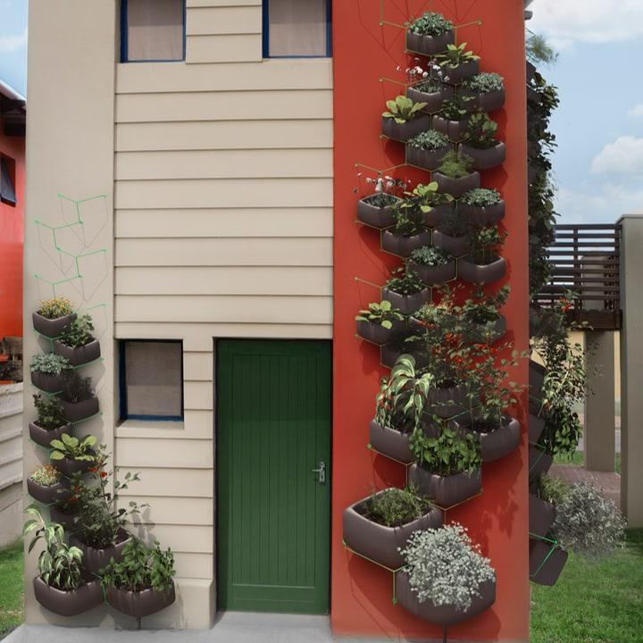 outdoor vertical wall garden