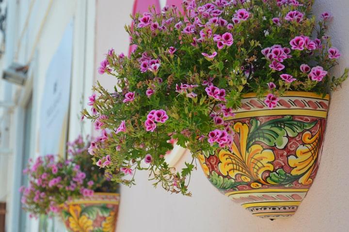 painted planter garden white wall ideas