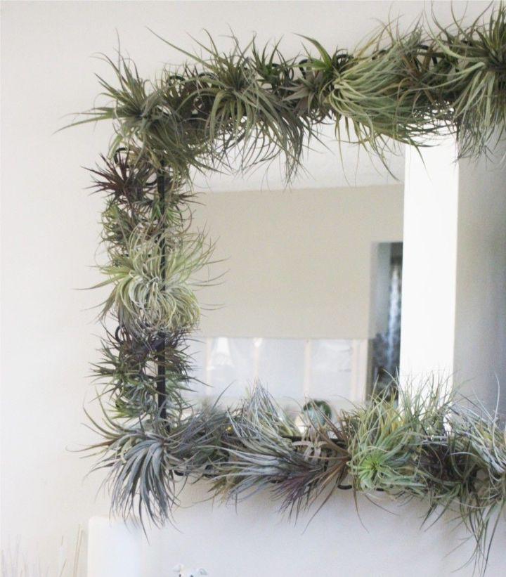 plant wall bedroom