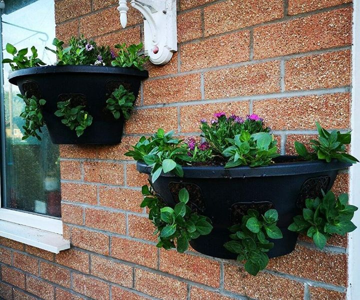 plant wall containers