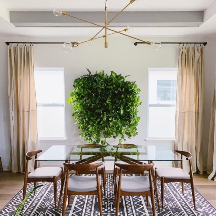 planted wall dining area backdrop