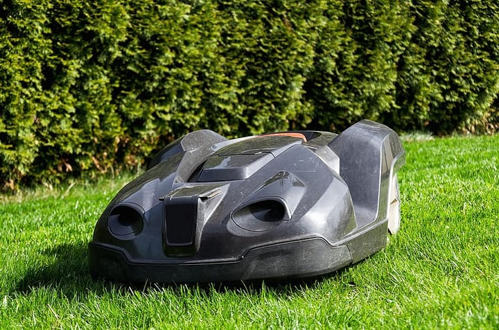 robotic lawn mower working in the garden