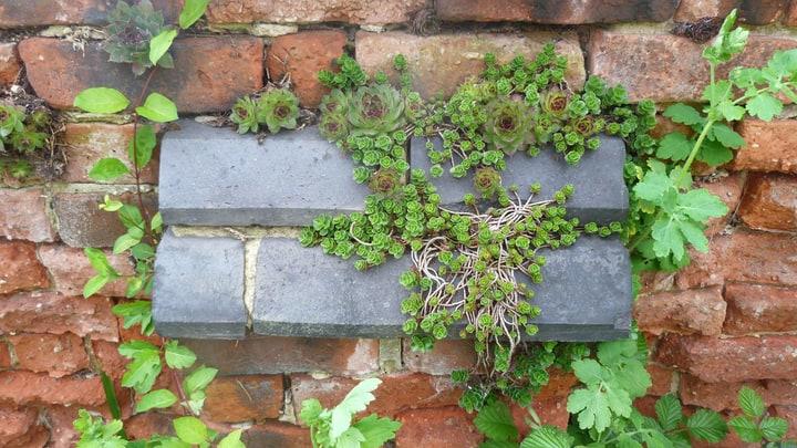 small brick garden wall