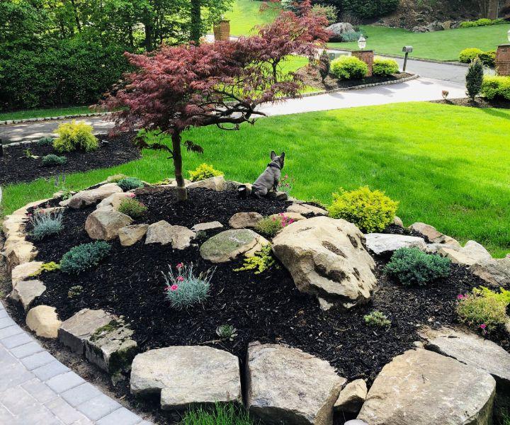 spring gardening pictures