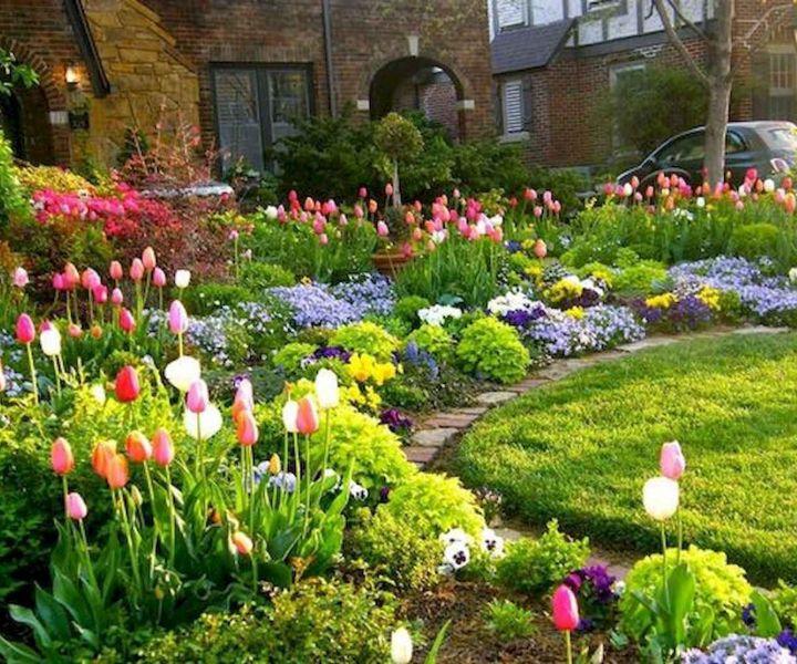 spring gardening plants