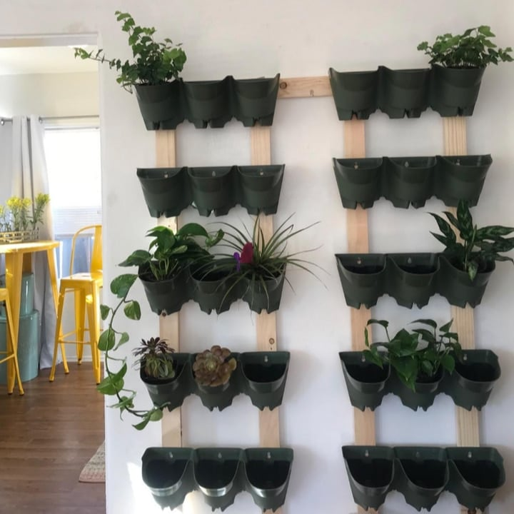 vertical planted wall indoors
