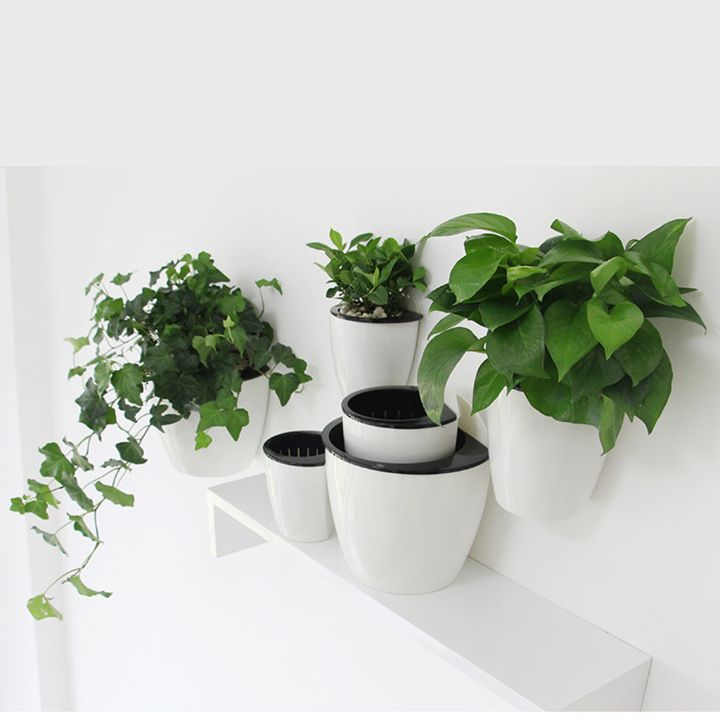 wall planter decor