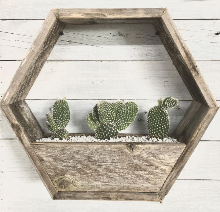 wall planter display