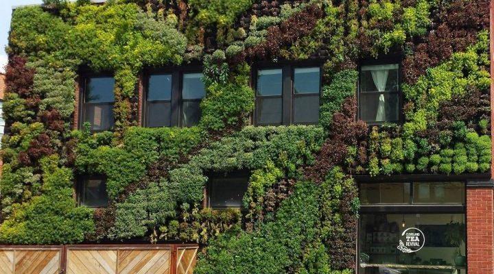 wall planter garden