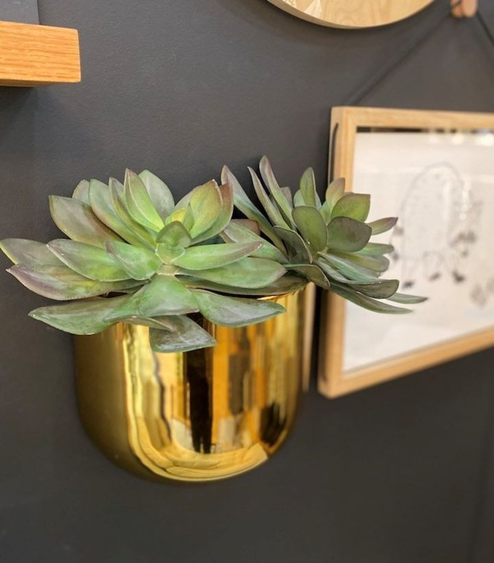 wall planter gold