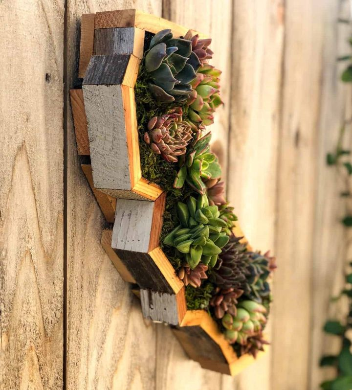 wall planter holder
