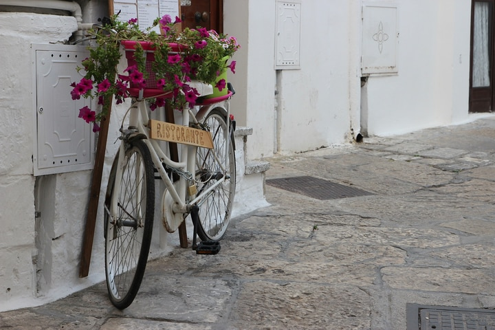 white wall accenter with bicycle planters