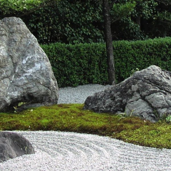 zen moss garden