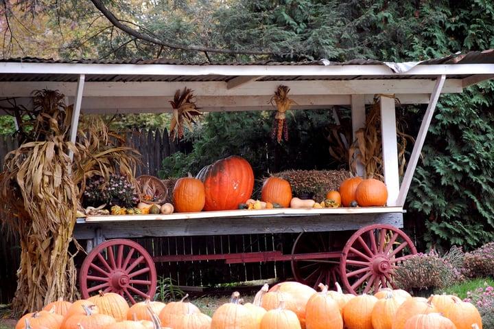 cute market garden farm stand