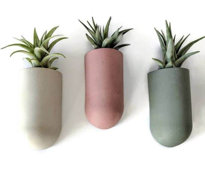 indoor wall hanging herb planters