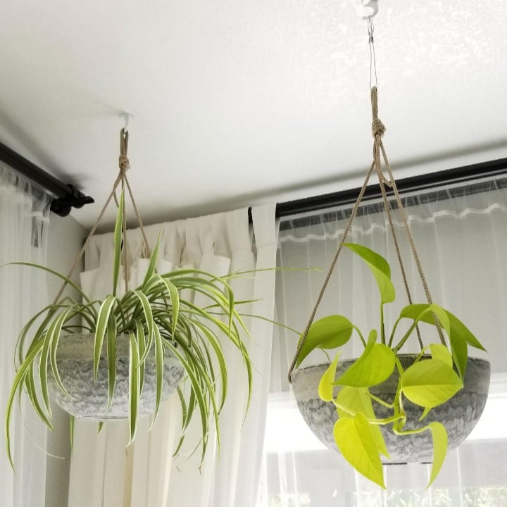 minimalist hanging wall planter