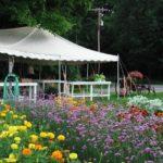 profitable market gardening
