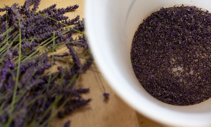 shelling dried lavender flower