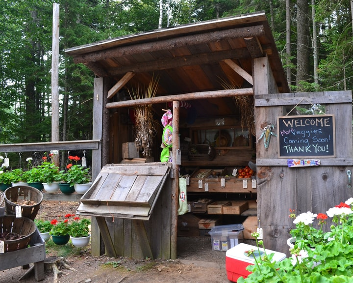 small scale market gardening