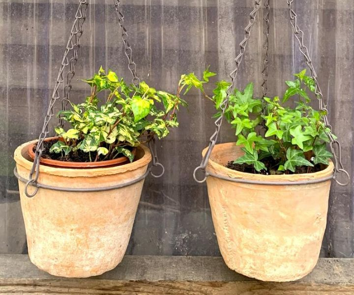 terra cotta hanging wall planters