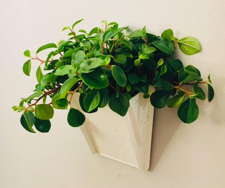 wall hanging planter boxes