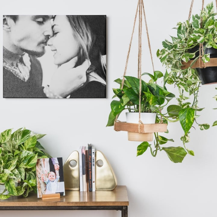wall hanging planters nook