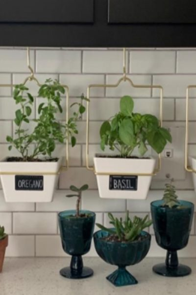 wall planters hanging