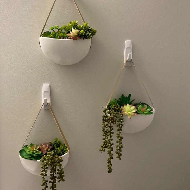 wall planters with succulents