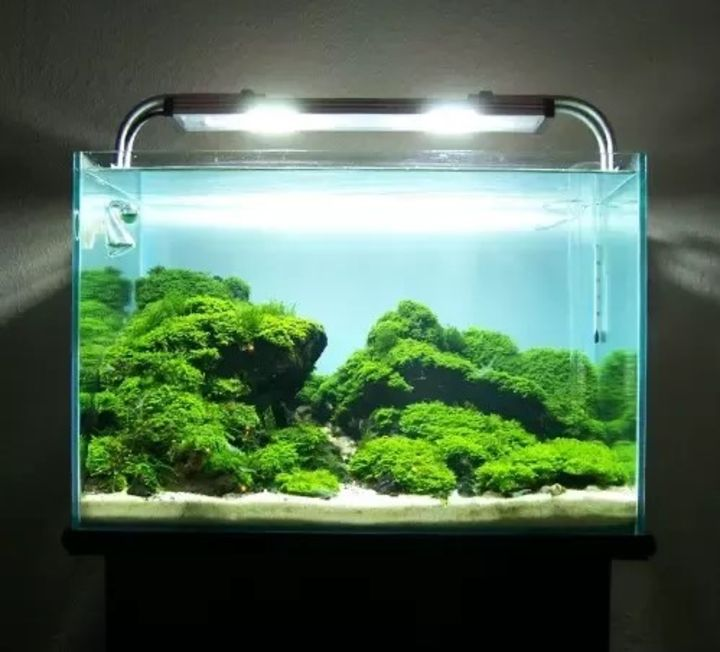 aquascaping lights